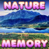 Brain Memory: Nature - Beat all the modes in this nice match card game. You need to start clearing the
