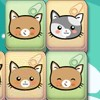 Cute Kitty Matching - Cute Kitty Matching ,a lovely and fun game.find the twins kitty before the time's up.come on!
