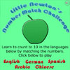 Little Newton's Number Match Challenge - Learn to count to 10 in English, German, Spanish, Arabic, and Chinese by matching the numbers.