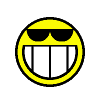 Smile - Puzzle game that helps teach absolutely no mathematical concept whatsoever. Yippee! Smile is a simply game in which you are trying to change all the smilely faces into faces with sun glasses, and is based off the popular lights-out game found almost everywhere. Smile is guaranteed to bring a smile to your face or your money back.